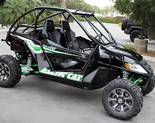 Custom Arctic Cat Wildcat